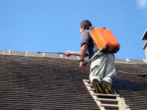 Traitement hydrofuge de toiture Pibrac